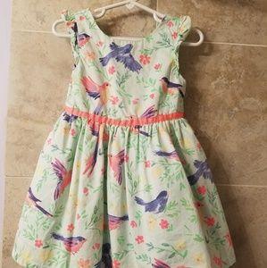 Cherokee 3t Bird Mint Green Coral Dress